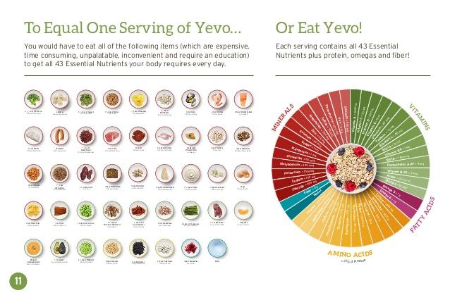 Yevo International Review